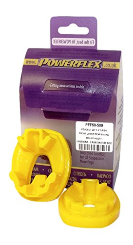 Powerflex PFF50-509 Supporto Posteriore Inferiore Motore EPTG LTD.