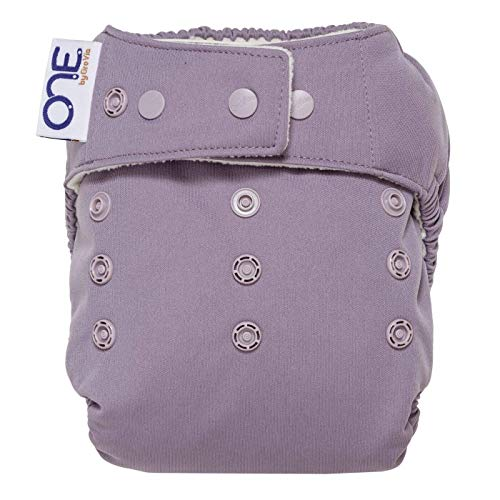 GroVia O.N.E. Reusable Baby Cloth Diaper (Haze)