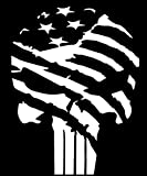 American Flag Punisher Vinyl Decal Sticker Car Truck Van Wall Laptop WHITE 5.5 In KCD678