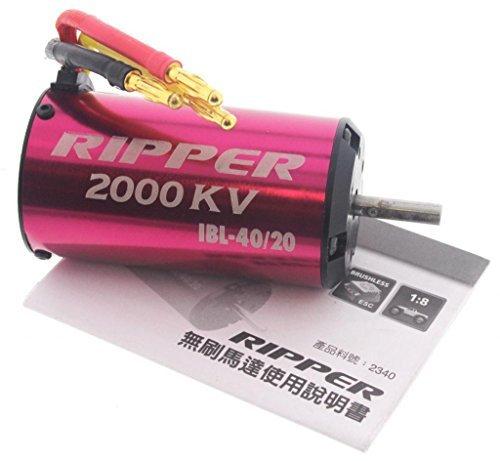 Thunder Tiger 1/8 eMTA G2 ACE RIPPER 2000kV IBL-40/20 BRUSHLESS MOTOR 6S LiPo by Thunder Tiger - Thunder Tiger Brushless Motors