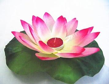 Amazon Color Changing Lotus Flower Romantic Love Mood Lamp