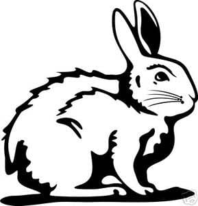 Caza conejo , vinilo adhesivo, pegatinas - 50cm Altura - 50cm Ancho - Negro Vinilo