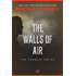 The Walls of Air (The Darwath Series Book 2)