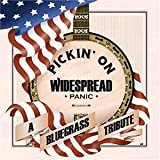 Pickin on Widespread Panic: Bluegrass Tribute
