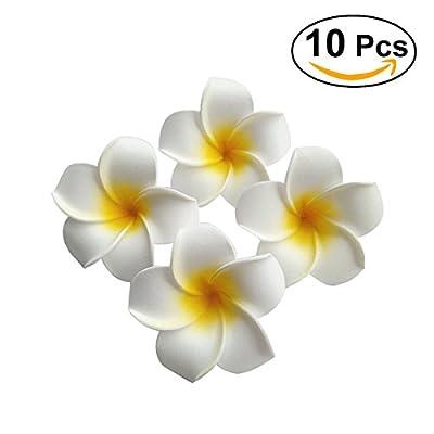 Frcolor Women's Hawaiian Plumeria Flower Hair Clip Wedding Bridal Hairpin Barrette Hair Accessories - 10 Pieces