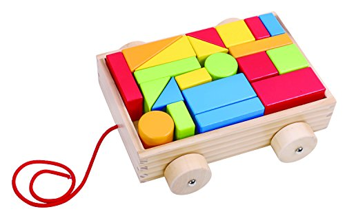 tookytoy-toy-blocks-with-organizer-push-car-set-for-toddlers-preschool-age-colored-small-wood-blocks