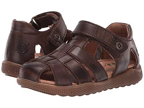 Naturino Boys Gene Gladiator Sandals, Brown (T.Moro 0d01), 8.5 UK 8.5UK Child