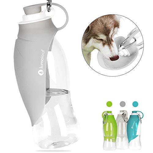 LumoLeaf Water Bottle for