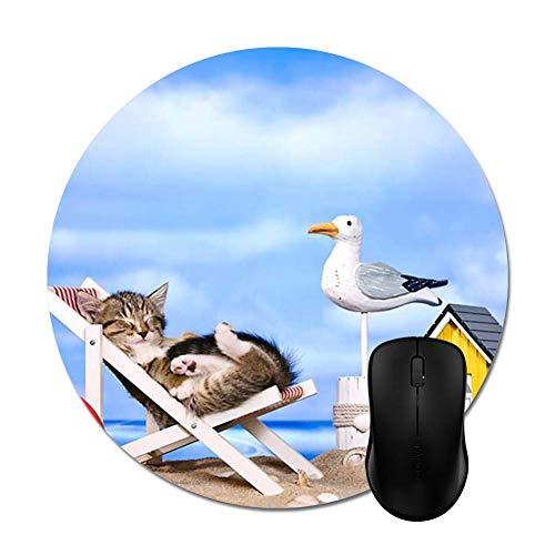 Memory Shop Gray Kitten on Beach Silla Alfombrilla de raton Elegante Accesorio para computadora de Oficina Redo