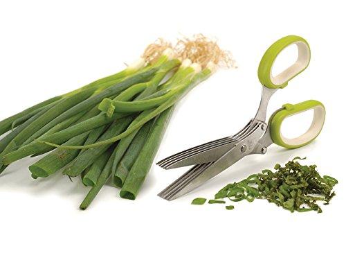 RSVP International Fruit & Vegetable Kitchen Tool Collection Dishwasher Safe, Herb Scissors, GREEN