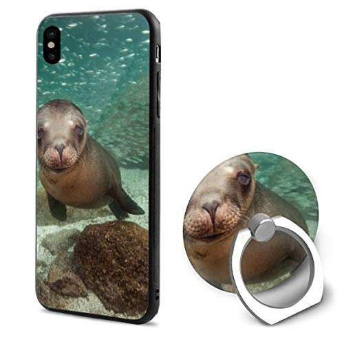 (Barton Apple iPhone Xs Case/iPhone X Case + Finger Ring Stand Holder 360 Degree Rotating Combo Set - Cute Seal Sea Lion)