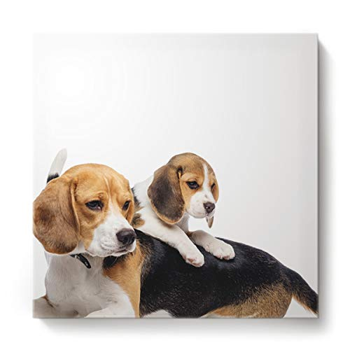 s Wall Art Square Oil Painting Home Decor for Office Hotel,Cute Beagle Dog Animal Pattern Canvas Artworks,Stretched by Wooden Frame,Ready to Hang,12 x 12 Inch ()