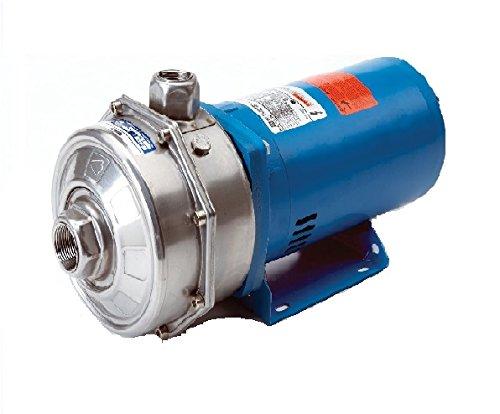 Goulds LCB1H1D0 Centrifugal Pump ()