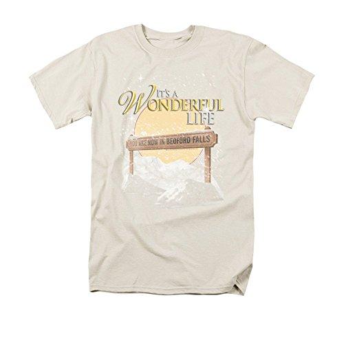 It's A Wonderful Life -¬+++s A Wonderful Life - Wonderful Story Adult Regular Fit T-Shirt S