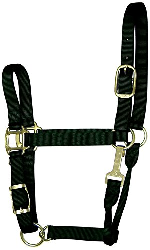 - Hamilton 1-Inch Nylon Adjustable Quality Halter with Chin Snap for 1100 to 1600-Pound Horse, Large, Black