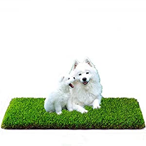 MTBRO Artificial Grass for Dogs, Professional Dog Grass Pee Pads and Dog Potty Grass