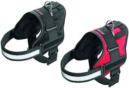 Teflon® Xtreme No Limit Perros especial Vajilla Perros Collar con ...