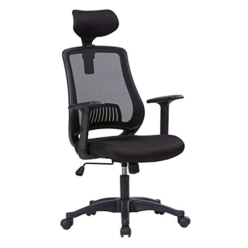 Petite High Back Executive Chair - LIANFENG Ergonomic Office Chair, High Back Executive Swivel Computer Desk Chair with Adjustable Armrests and Headrest, Lumbar Support, Black
