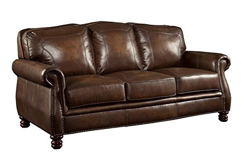 1PerfectChoice Montbrook Brown Traditional Sofa