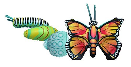 Giant Inflatable Butterfly Life Cycle Stages 4 Piece Set w/ 21 Inch Butterfly