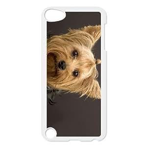 Perros Categoría de perro de Yorkshire Terrier freein PET DOG funda iPod Touch 5 Funda Caso de la cubierta blanca, funda de plástico caja del teléfono celular