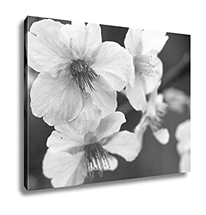 Ashley Canvas Japanese Flowering Cherry Blossoms Wall Art Home Decor Ready To Hang