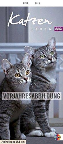 Whiskas Katzenleben 2014: Mit Katzengeschichten
