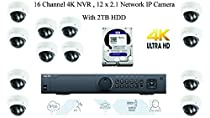 LTS Platinum Enterprise Level 16 Channel 4K NVR with 12 Fixed Lens Dome IP 2.1MP Cameras and 2TB HDD