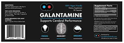 Galantamine – 6 mg – Lucid Dreaming, Nootropic, Brain Health – Vegetarian Capsules – Dye-Free