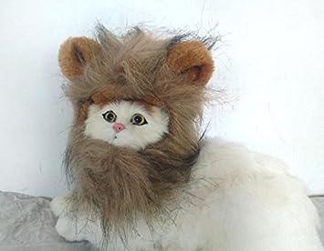 Xinjiener Suéteres de Perro Perro Gato Divertido Cabeza de León Peluca Accesorios Suministros Decoración para Mascotas