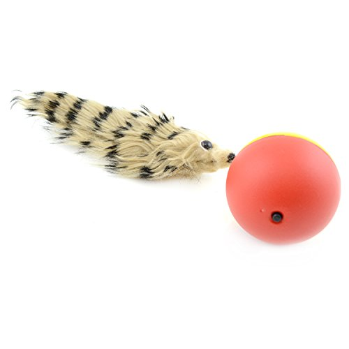 Nean Hunde und Katzen Spielzeug Wieselball batteriebetrieben Weazel ball Wiesel am ball Squirrelball
