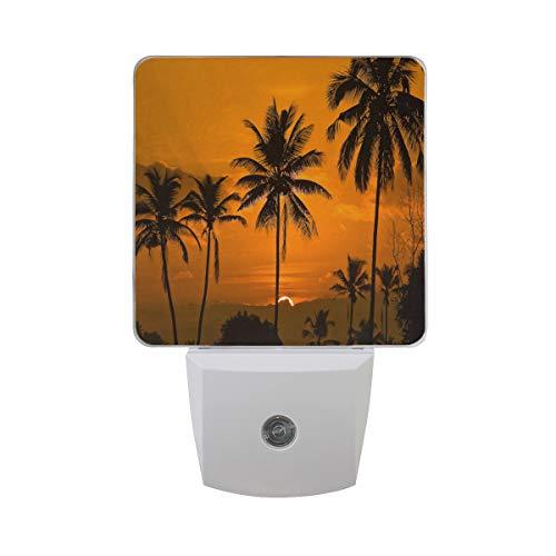 Night Lamp Sunrise in Tamborim South Goa Night Light LED Sensor Auto on/Off Led Plug in Wall Lights 2 ()