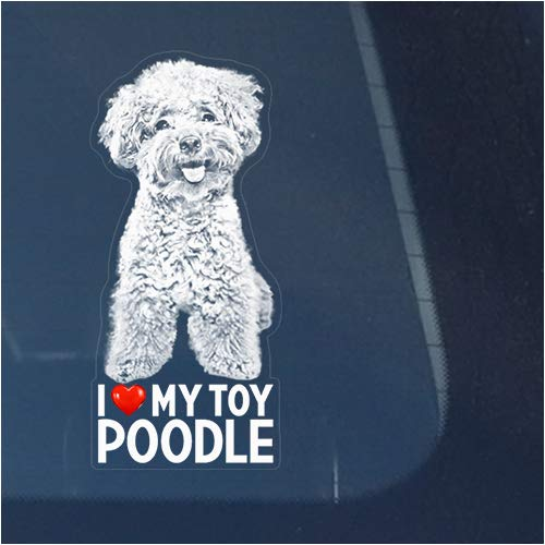 I Love My Toy Poodle Clear Vinyl Decal Sticker for Window, Miniature Teacup Dog Sign Art Print Design