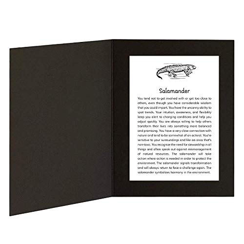 Salamander with Power Animal Message in 5x7 picture folder frame ()