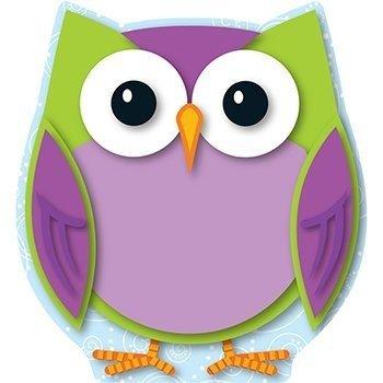 Amazon Com Colorful Owl Mini Cut Outs Themed Classroom