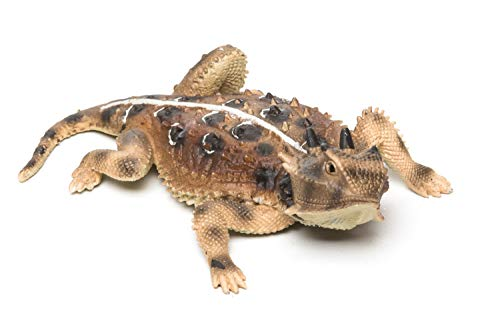 (Desert Horned Lizard Painted Pewter Figurine 5