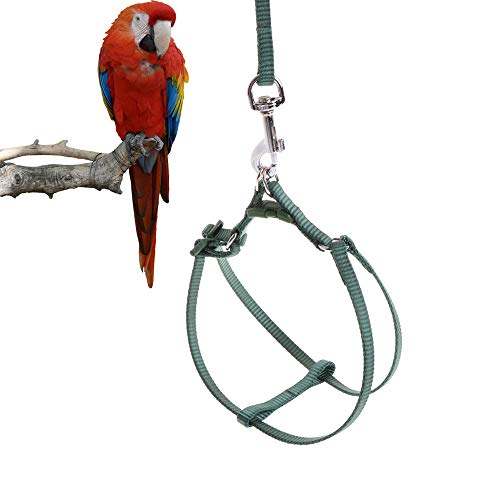 - ASOCEA Adjustable Feather Tether Bird Harness and Leash for Medium to Large Breed Parrots Fits Birds Chest Between 33-50cm