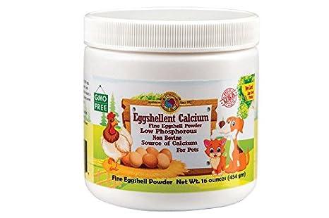 Amazoncom Pets Friend Eggshellent Calcium 16 Ounces Pet Supplies