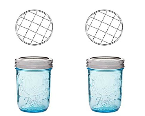 Blue Mason Jar with Flower Frog Lid Insert (2, (Ball Perfect Mason Jar)
