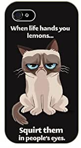 "diy phone caseipod touch 5 Grumpy cat ""When life hands you lemons... squirt them in people's eyes - NAME - black plastic case / Inspirational and Motivationaldiy phone case"