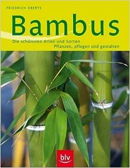 Bambus Die Schönsten Arten Und Sorten Pflanzen Pflege Und
