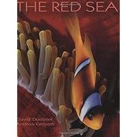 The Red Sea (Secrets of the Sea)
