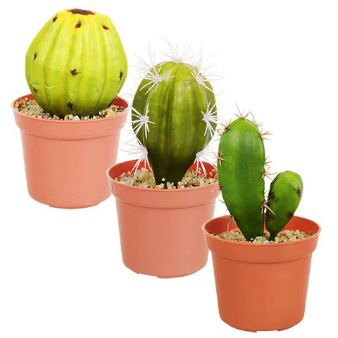Toy Succulents Unique Succulent Artificial Potted House Indoor Bulk Garden Mini Small Planter Plant Aloe Cactus Cacti (Collection of 3) by Toy