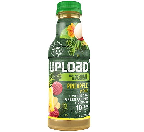 UPLOAD Pineapple Lychee +Green Coffee +Ginger +White Tea, Rainforest Infusions Bottles, 16 fl. oz., 12 Count (Rain Forest Ginger)