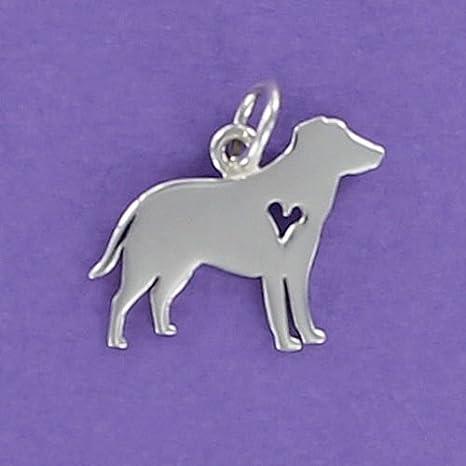 Amazon.com: Labrador Retriever - Colgante de plata de ley ...