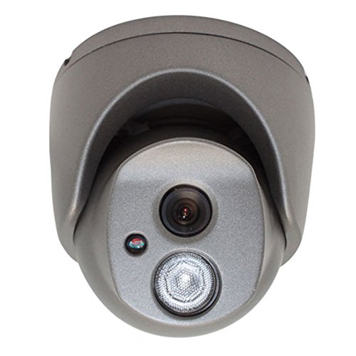 GW Security Inc VD120AR 1/3-Inch Sony CCD Outdoor Camera, 1 Array IR LED, 65-Feet IR, 560 TV Lines, 3.6mm Lens, Metal Vandal Proof and Water Proof
