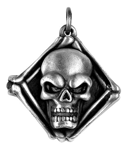Skull Locket Pendant Collectible Medallion Necklace Accessory (Medallion Locket)