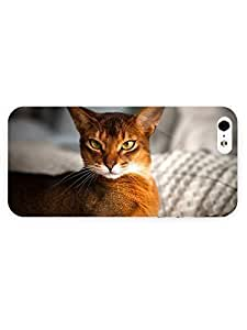 phone covers 3d Full Wrap Case for iPhone 5c Animal Abyssinian