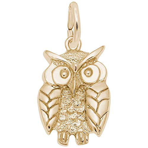 Charm Rembrandt Owl - Rembrandt Wise Owl Charm, Gold Plated Silver