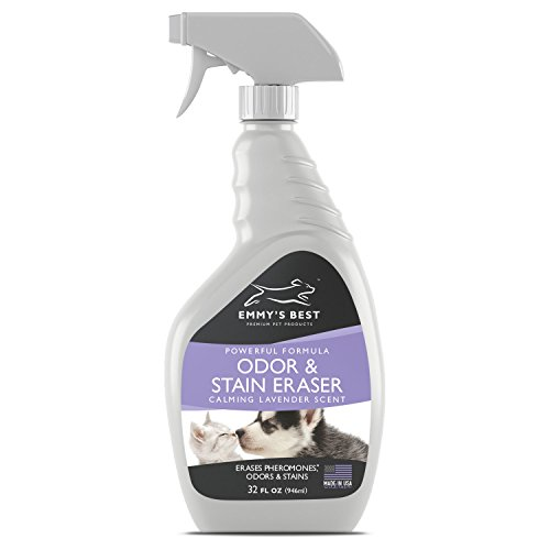 Powerful Pet Odor Eliminator & Urine Remover Exclusive Enzyme Cleaner Takes Out Tough Stains, - The Cat Emmy